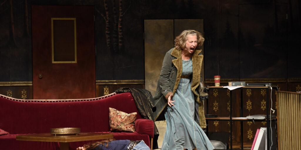 DER NIBELUNGEN WUT – FUROR TEUTONICUS von Johanna Schall und Grit van Dyk  (Schauspiel)